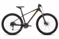 Electric Mountain Bike Hire Alpe Huez